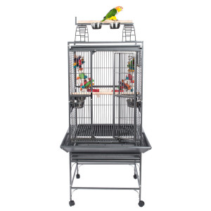 RC-bolivia-parrot-cage-with-bird