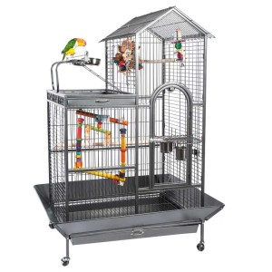 SL-angel-parrot-cage-with-bird.jpg