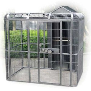 outdoor-parrot-aviary-house.jpg