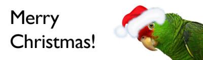merry christmas polly