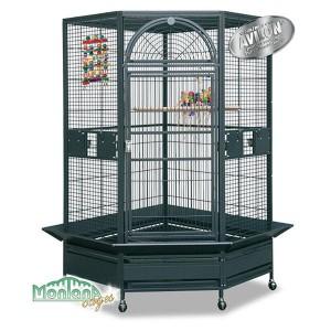 Montana-denver-corner-parrot-cage.jpg