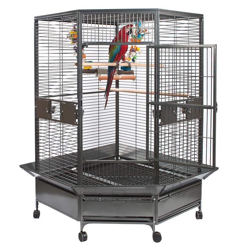 Rainforest Toronto Large Corner Parrot Cage Parrotize Uk