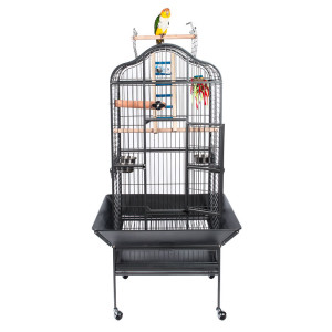 SL-eagle-parrot-cage-with-bird.jpg