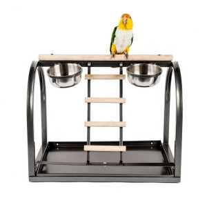 Table-Top-Stand-With-Parrot.jpg
